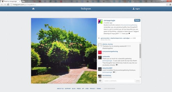 proof_Instagram-ChrisBrainTrees_18-11-2014
