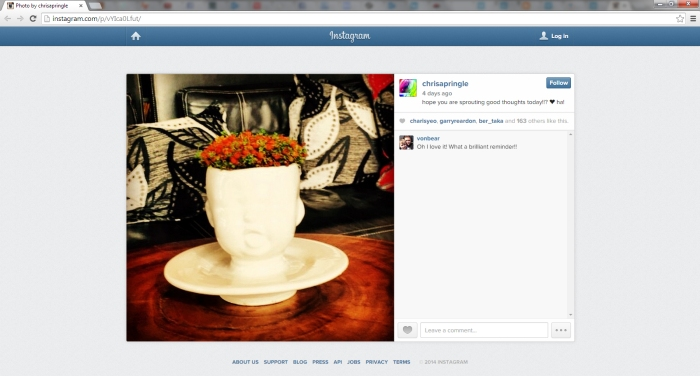 proof_InstagramChrisCaroline-LeafThoughts_18-11-2014
